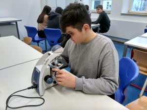 Die Schüler der Klasse 8g testen die neuen Mikroskope